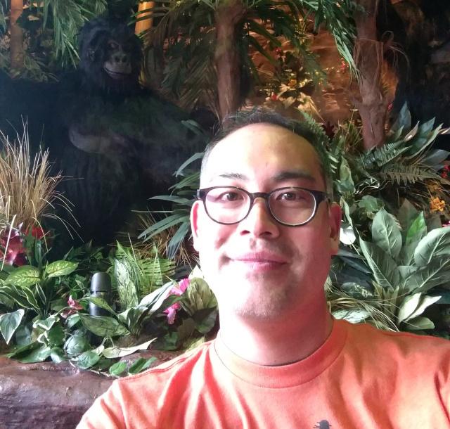 dale-gorilla